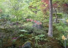 3 Bedrooms, Villa, For sale, Tsurudamari, 1 Bathrooms, Listing ID 1005, Karuizawa, Nagano, Japan,